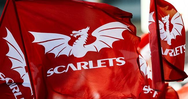 История названий и гербов. «Скарлетс» – как прозвище стало регбийным брендом